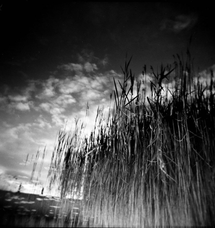 Holga Dreams – double exposure, Holga (another love affair camera) shot on the Cardiff wetlands just around the corner from the busy bay area – a perfect camera for expressing dreams