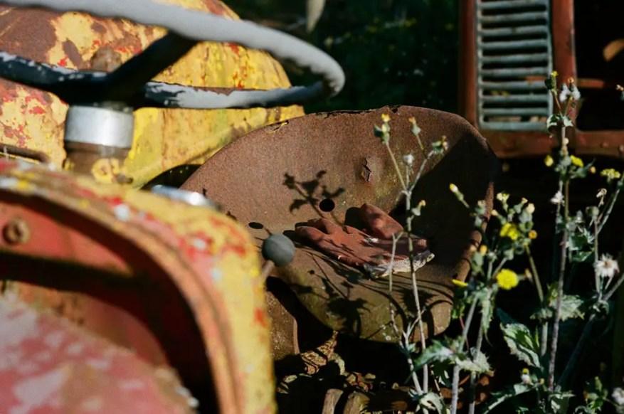 Wilces Cider - Sonnar 50mm 1.5 - Kodak Portra 400