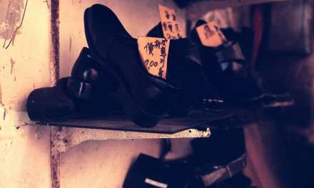 Cobbler – Rollei CR200 (120)