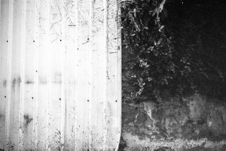 Two-tone - Fuji Neopan 400 shot at ISO 200. Black and white negative in 35mm format Push processed one stop.