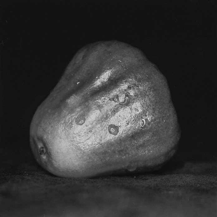 Wax apple study #02 - Ilford Pan F Plus shot at EI 50. Black and white negative film in 120 format shot as 6x6. 32E extension tube.