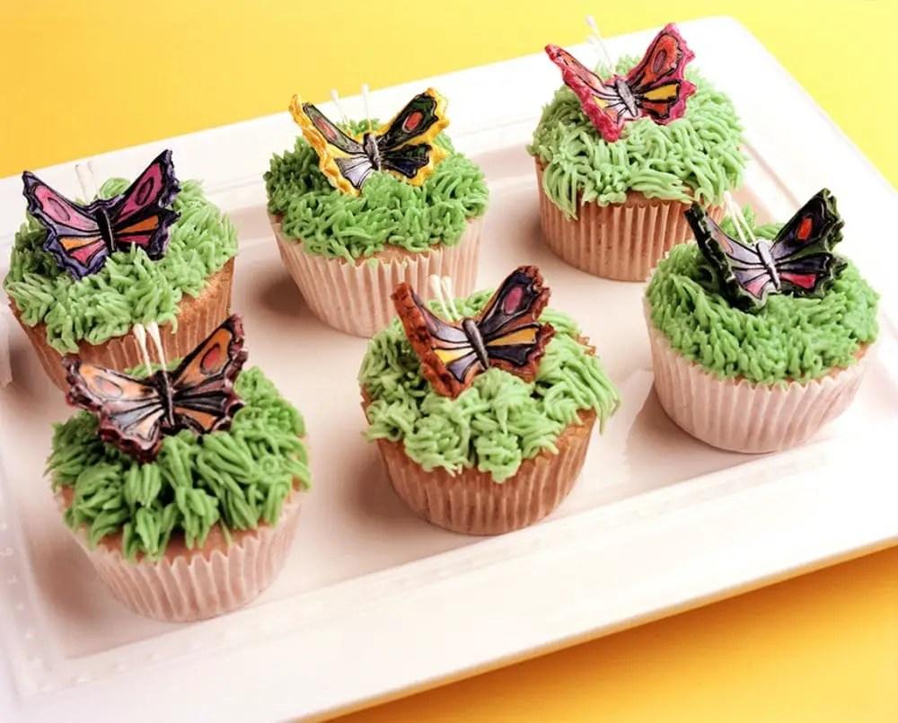 Bronica GS-1 - Butterflies