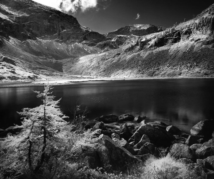 Karwassersee IR - Mamiya 7ii - Rollei Retro 80s