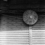 Shady looking - 2016-05-06 - Kodak Tri-X 400 shot at EI 3200. Black and white negative in 120 format shot as 6x6. Push processed 2 stops.