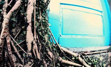Behind the blue door – Fuji Pro 160NPC (120)