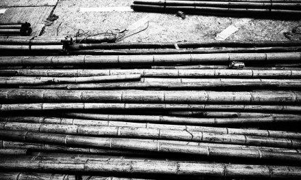 Bamboozled – Shot on Kodak EASTMAN DOUBLE-X 5222 at EI 800 (35mm)
