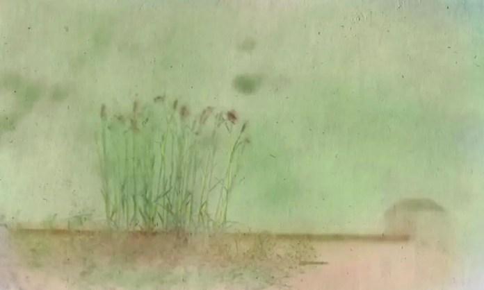 Tined Retina Railing - John Nanian