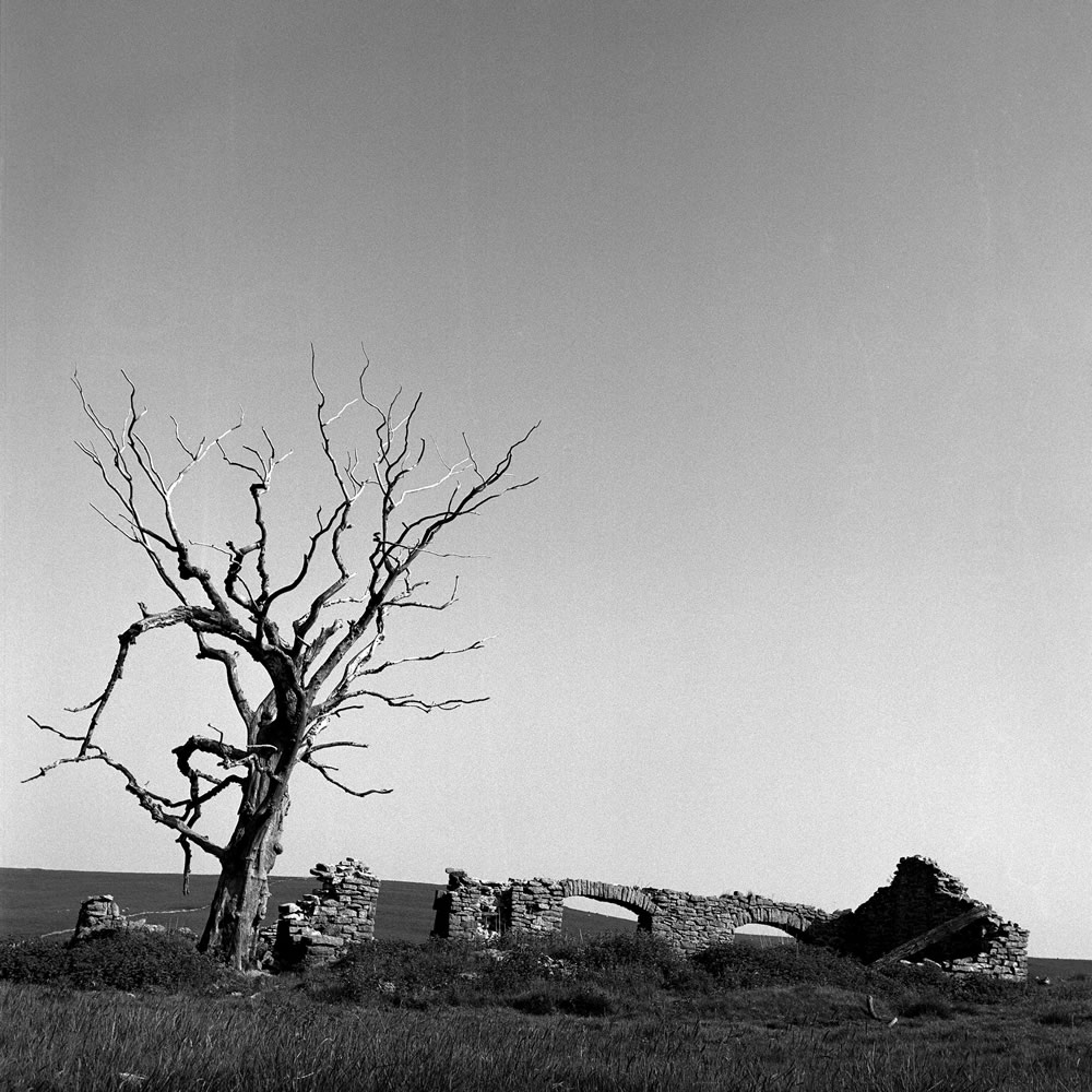 Ruined House - Hasselblad 500C-M - Zeiss Distagon CF 60mm f-3.5 - Kodax T-Max 400 (bad batch) - Kodak HC-110 - Epson 4180