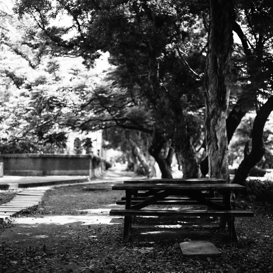 Bench - Ilford Delta 400 Professional shot at EI 400. Black and white negative film in 120 format shot as 6x6. 2x Teleconverter.