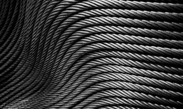 Coiled – ADOX Silvermax 100 (35mm)