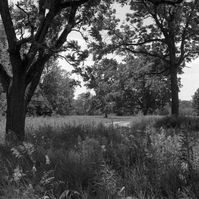 The site of the former Shawnee Village of Prophetstown, destroyed during the battle of Tippecanoe, a prelude to the Anglo-American War of 1812. Hasselblad 500c – Carl Zeiss Planar 80mm 1:2.8 – Ilford FP4+ - Kodak D-23.