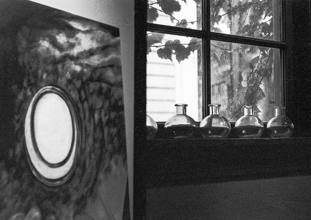 Painting and Window - Exakta Varex IIb - Ilford HP5+ - Zeiss Flektagon 35mm