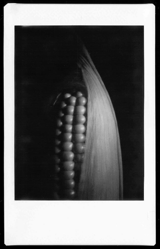 Photographer: Alex Lau Award: Second place Title: Cornie Camera: DIY pinhole camera using a Fujifilm Instax Mini 7S to eject the film.