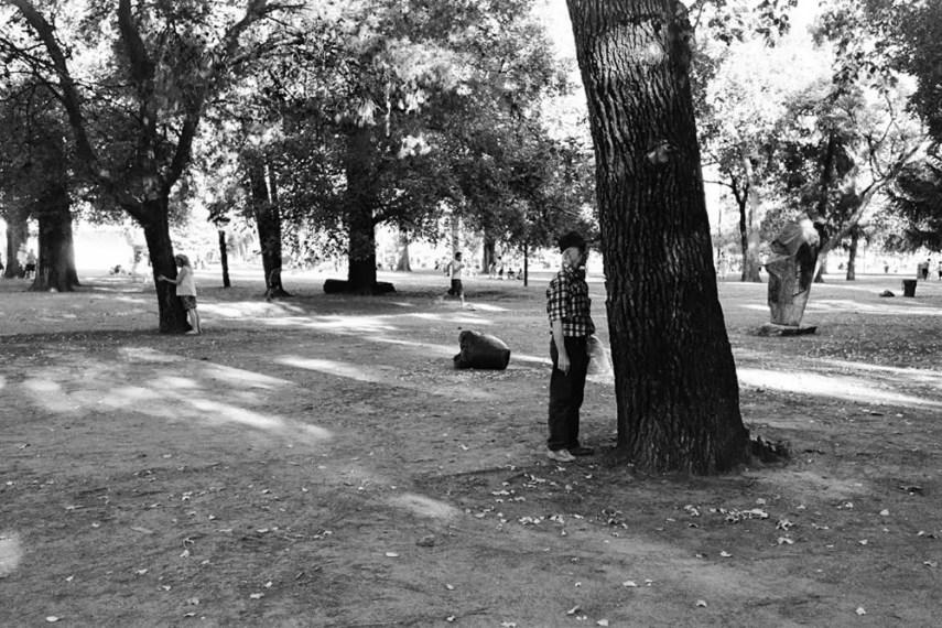 Tree huggers - Leica M6, Zeiss ZM C-Biogon 35mm f/2.8, dm Paradies 400 (bw conversion)