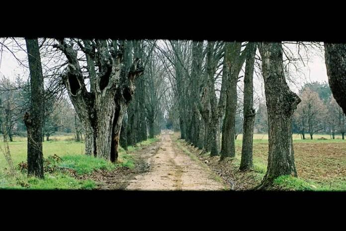 Cerberus in disguise. Deir Taanayel - fall 2005. Pentax MZ-5N (panoramic mode) - Kodak film