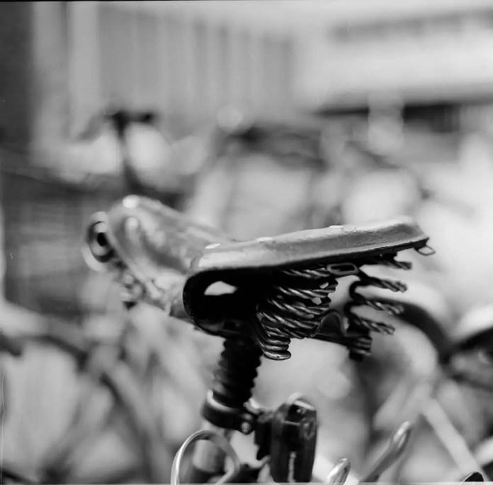 Kodak T-MAX 100 (120 - 6x6) shot at EI 100
