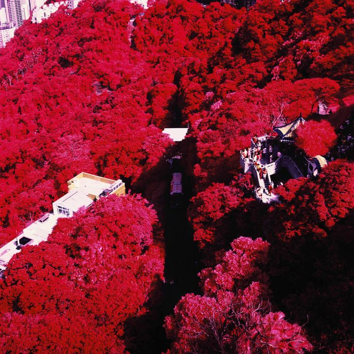 Vernicular rising - Kodak AEROCHROME III 1443 shot at EI 400. Color infrared aerial surveillance film in 120 format shot as 6x6. Shot with #21 orange filter.