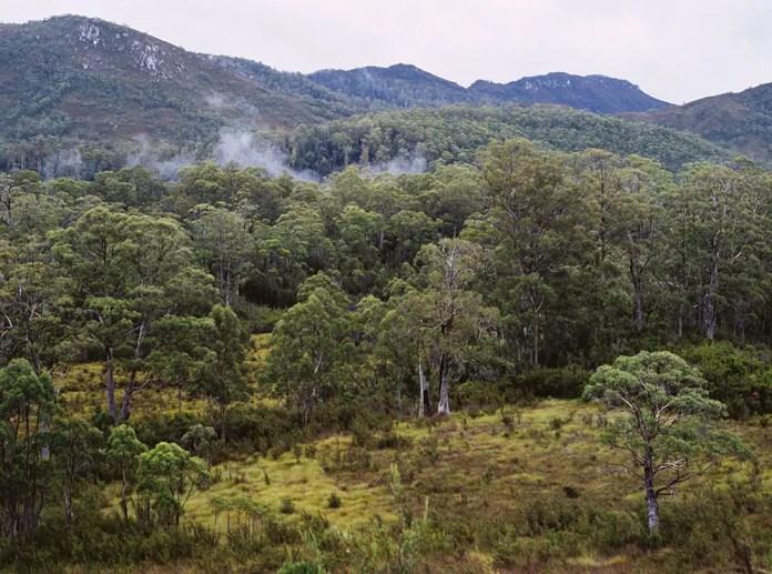 Untainted wilderness at Franklin-Gordon Wild Rivers National Park.