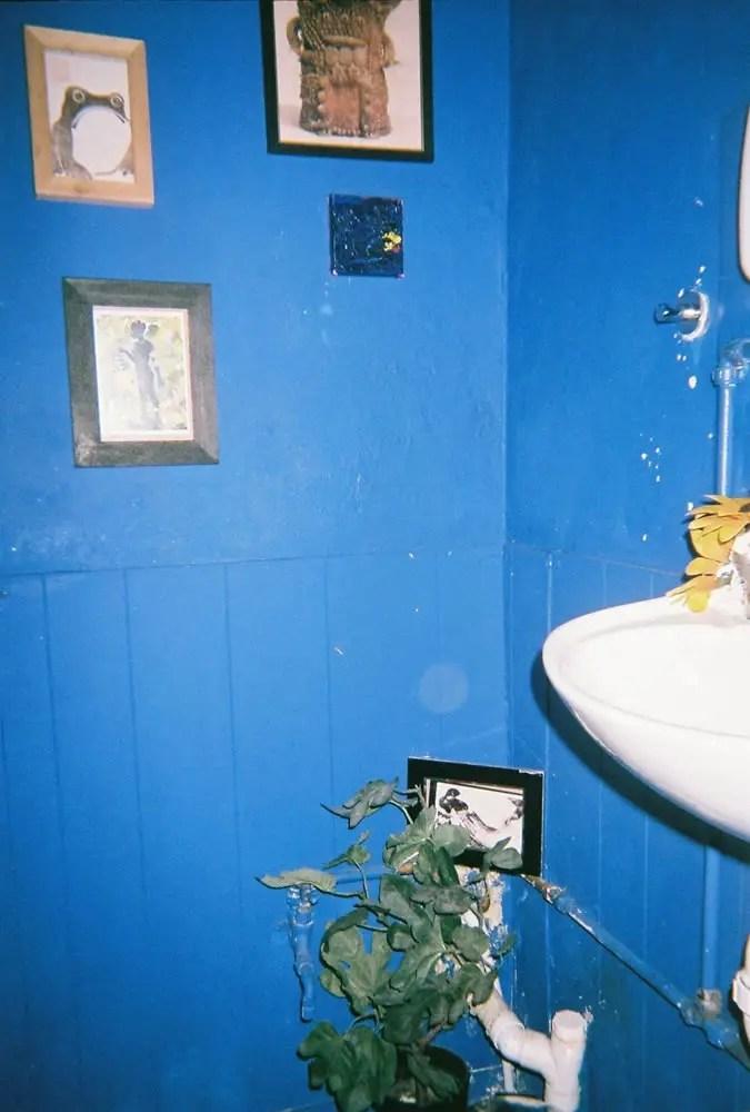 View 12, Fujifilm Superia 200 Disposable, Small White Elephant, Peckham