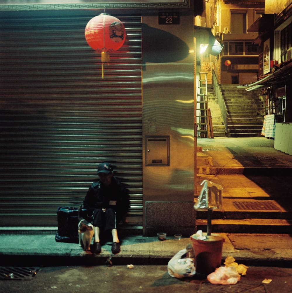 Sheung Wan, feline- Kodak Portra 800 - Fuji GS645W