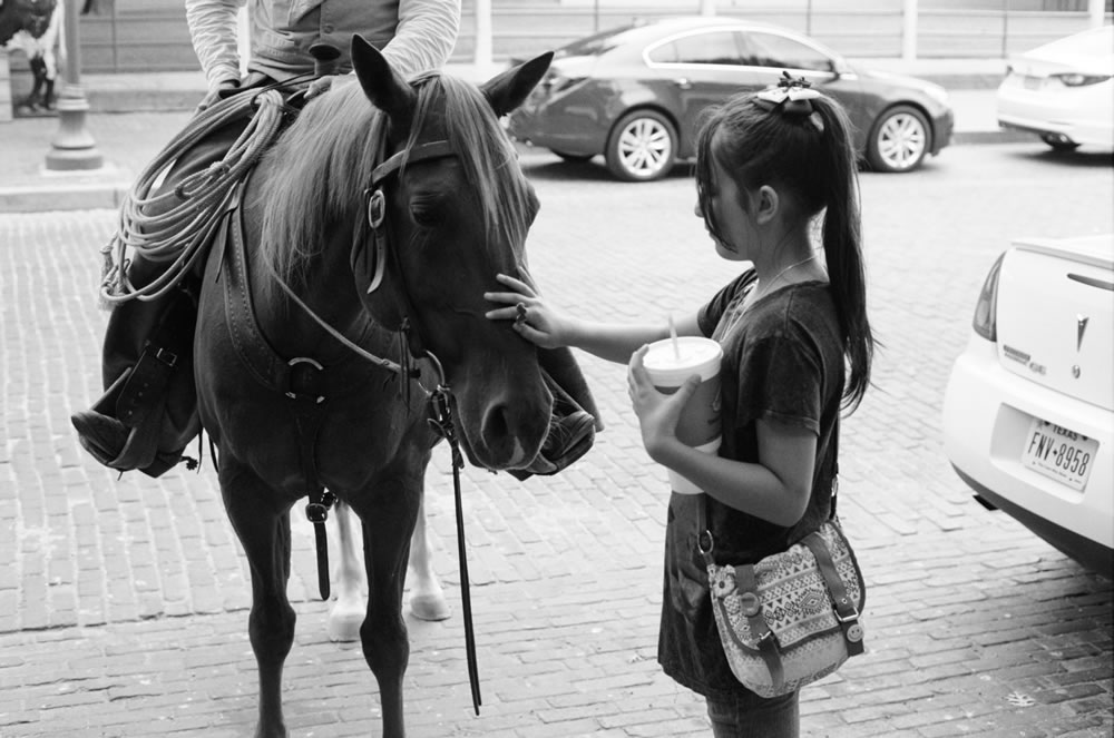 Daughter and horse - Fort Worth
