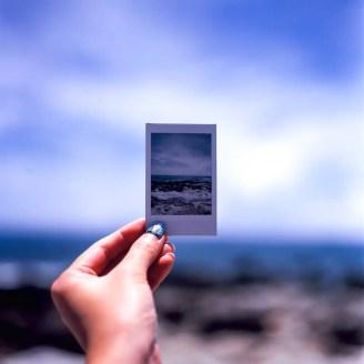 I made this - Fuji Velvia 100 (RVP100) shot at EI 100. Color reversal (slide) film in 120 format shot as 6x6.