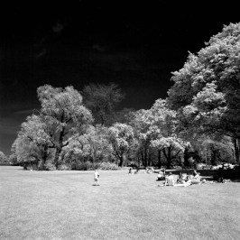 Rollei Infrared - Bronica SQ