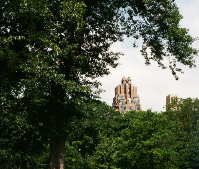 The Castle of Trees - Photographed on Agfa Vista, 200 speed, small-format, 135 film. I worked with my Minolta AG with this frame. This happens to be a view from Central Park in Manhattan, New York.