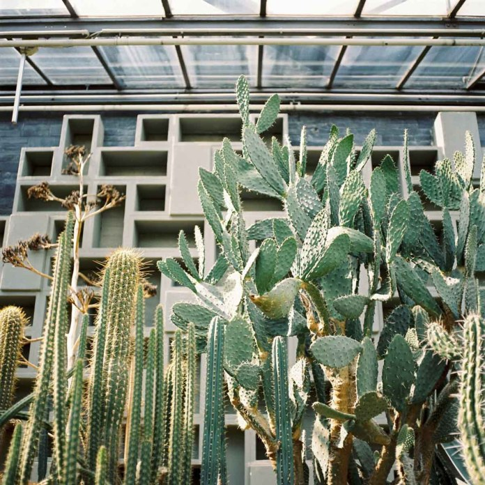 Taken with a Hasselblad 503 CW on Kodak Portra 400 in Hamburg, Germany.