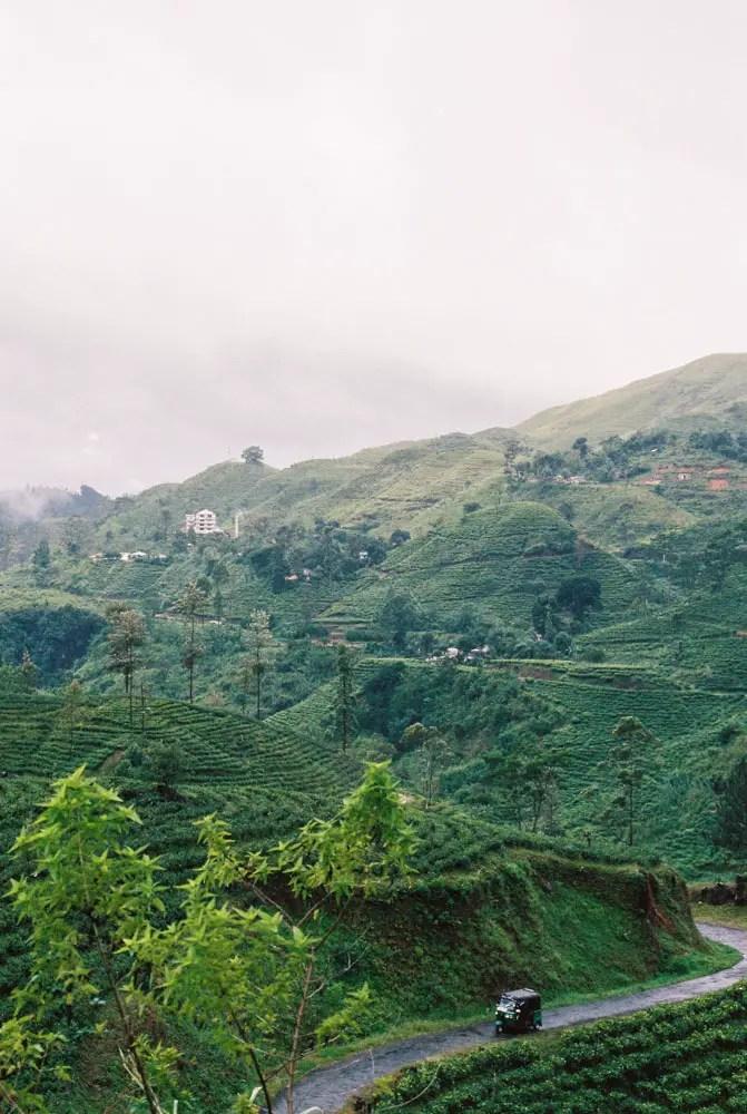 Nuwara Eliya Sri Lanka - Nikon F3, Nikon 50mm f/1.4, Kodak Portra 400