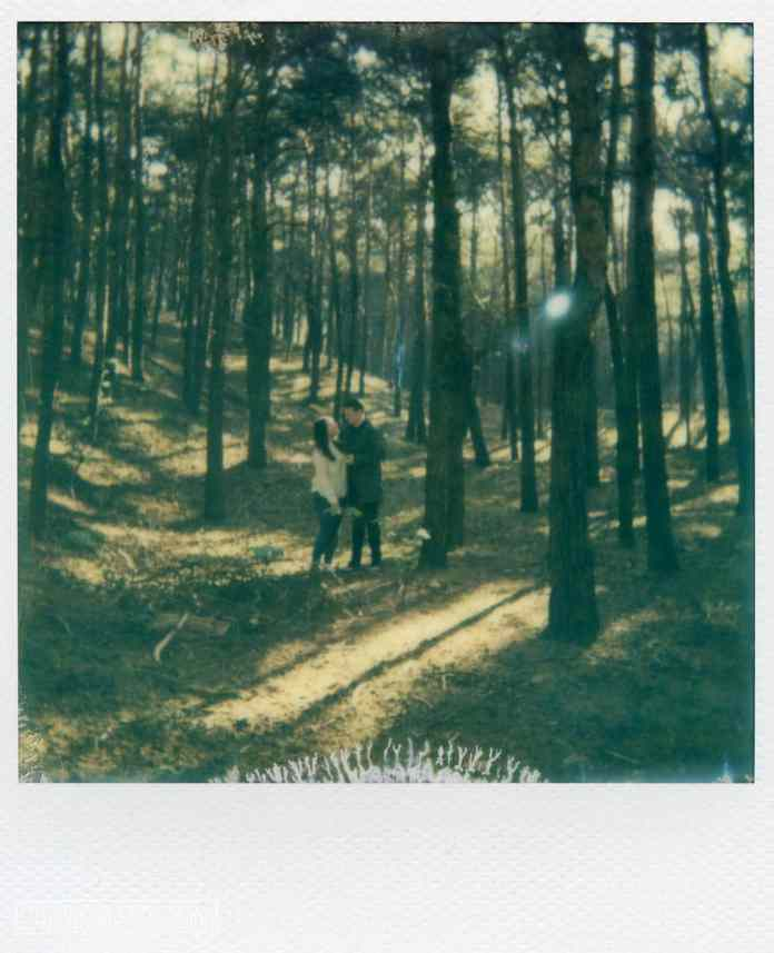 Formby Squirrel Reserve, Engagement Shoot 2017. Shot on Polaroid Close Up 600, Impossible Project