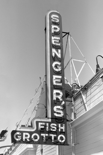 Kodak D-96 test 01 - Spengers, Berkeley