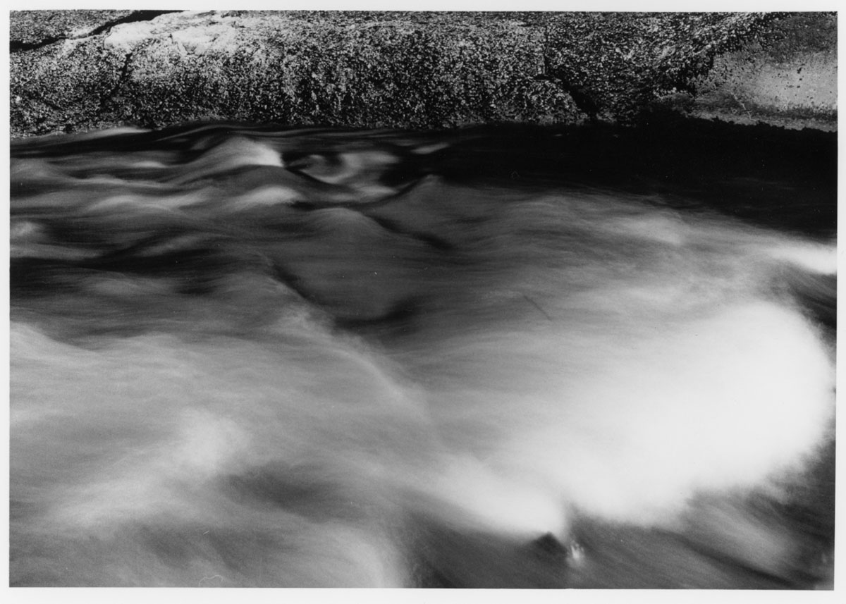 5 Frames With - ILFORD SFX 200 - Print 2