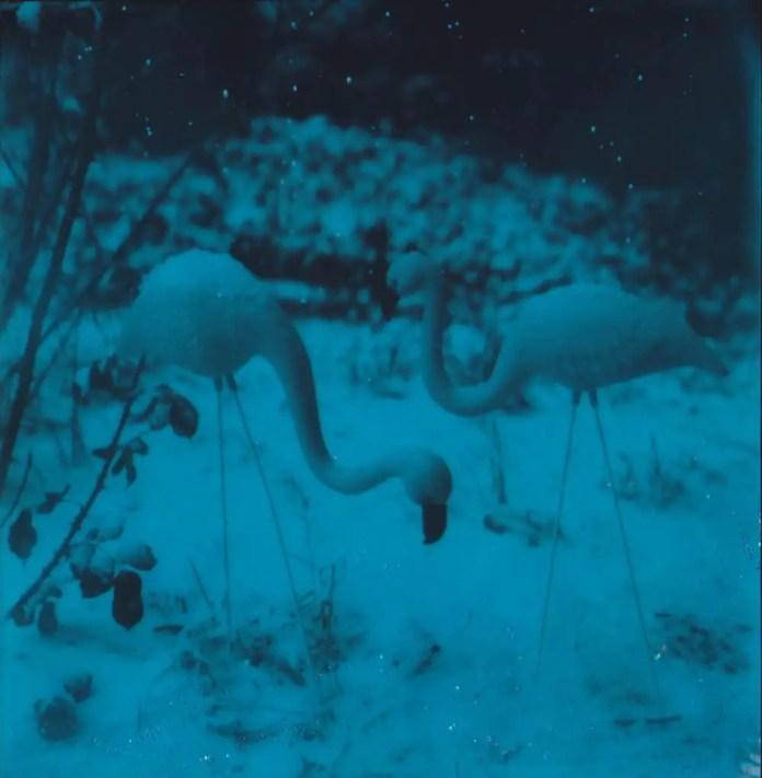 First Snow - Polaroid SLR680, Glitter on Polaroid Originals 600 Duochrome film
