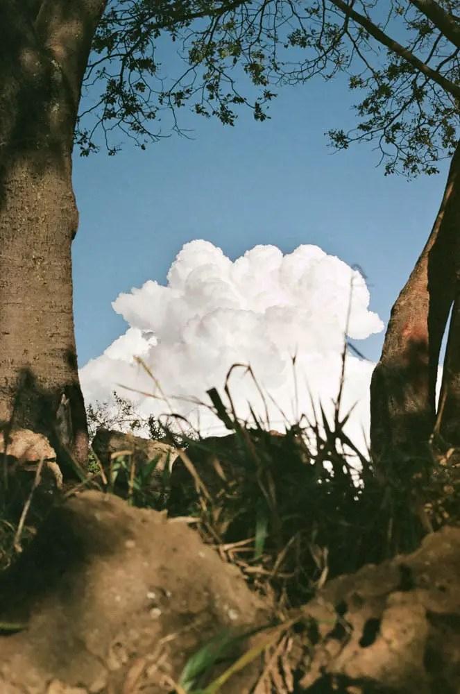 Portrait of a cloud - shot on Fuji Superia 100, in a park in Brasília, Brazil