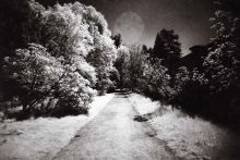 Fatso IR - Infrared photography with the Superheadz UWS and Rollei Infrared 400