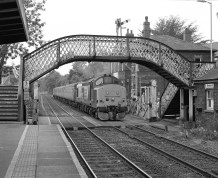 Train departing from Brundall, Norfolk - ILFORD Delta 400 Professional, ILFORD ID-11, 1+1, 14mins, 68°F