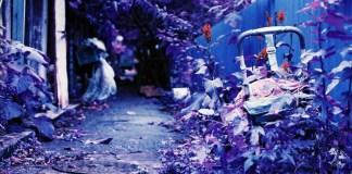 Child-friendly facilities - Shot onLomography Lomochrome Purple XR 100-400at EI 400. Color negative film in 35mm format.