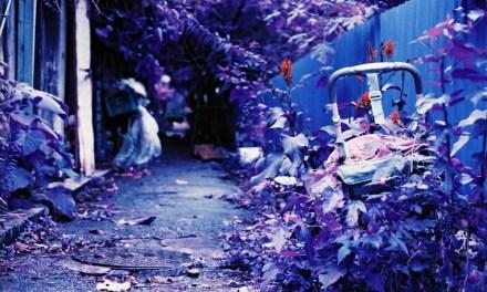 Child-friendly facilities – Shot onLomography Lomochrome Purple XR 100-400at EI 400 (35mm format)