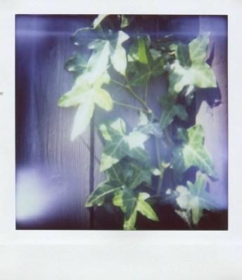 Diana Instant Square - Close-up lens - Ivy