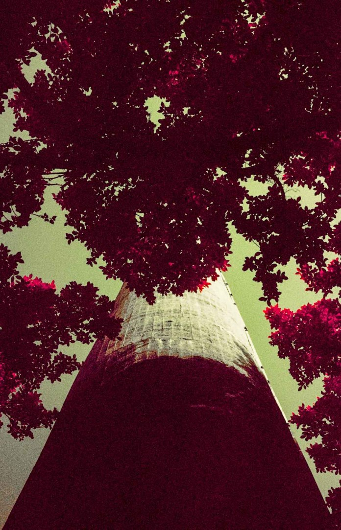 From below - Shot on Kodak AEROCHROME III 1443 at EI 400. Color infrared aerial surveillance film in 35mm format. Shot with #21 orange filter.