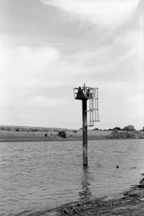 Ferrania P30 Alpha - Kodak XTOL test - Scott Micciche