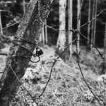Area secured - Shot onKodak EASTMAN DOUBLE-X 5222at EI 1600. Black and white negative film in 35mm format. Push processed 2+2/3 stops.