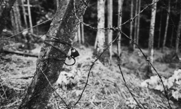 Area secured – Shot on Kodak EASTMAN DOUBLE-X 5222 at EI 1600 (35mm format)
