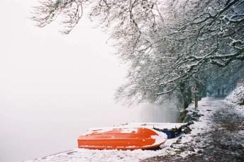 Foggy Winterland, Lac Pavin, France - Focasport 1D, Fujifilm Superia 200