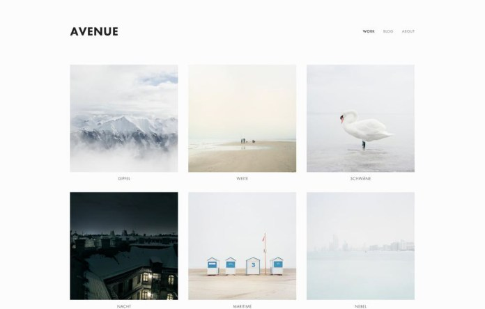 Squarespace - Avenue Theme