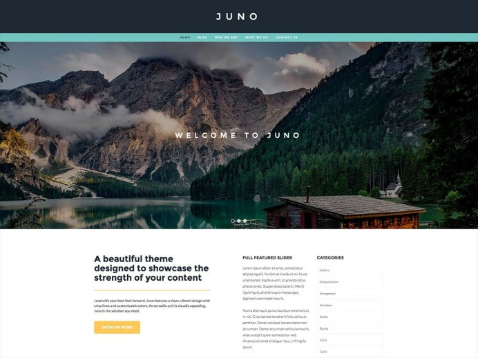 Wordpress - Juno Theme