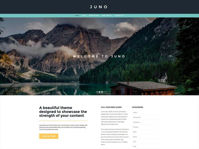 Wordpress - Juno Theme