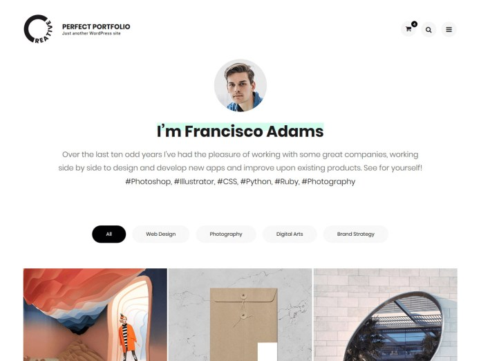Wordpress - Perfect Portfolio Theme