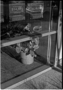 5 Frames With... Kodak T-MAX 400 (EI 400 : 35mm : Canon EOS1n) - by Chris Dixon